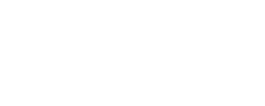 RSG Retail Services Group